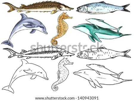 Freshwater river dolphin stock images royalty free images for Freshwater dolphin fish