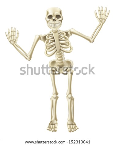 Drawing of a cute cartoon waving skeleton character. Great for Halloween or similar. - stock vector