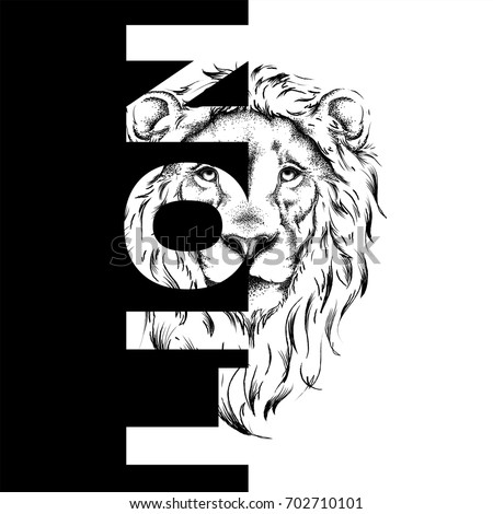 lion stock images royaltyfree images amp vectors