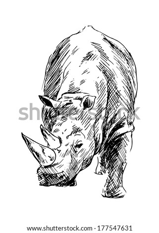 Drawing of a rhino. Vector illustration - stock vector