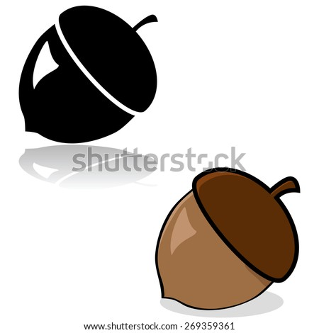 Drawing of an acorn in color and black and white - stock vector