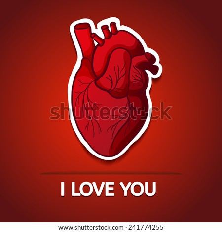Human Heart Vector Image Drawing The Human Heart on a