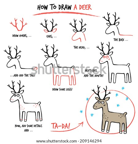 Drawing tutorial how to draw a deer step by step