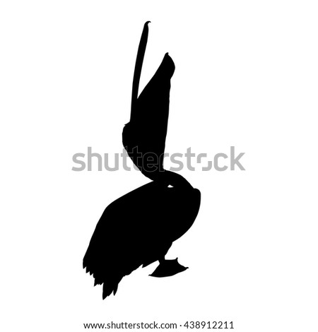 Drawing vector isolated Great white pelican, eastern white pelican, rosy pelican, white pelican - pelecanus onocrotalus silhouette - stock vector