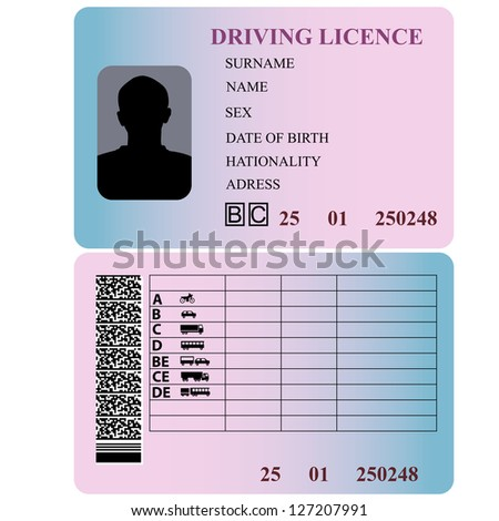 driver license stock images royalty free images vectors
