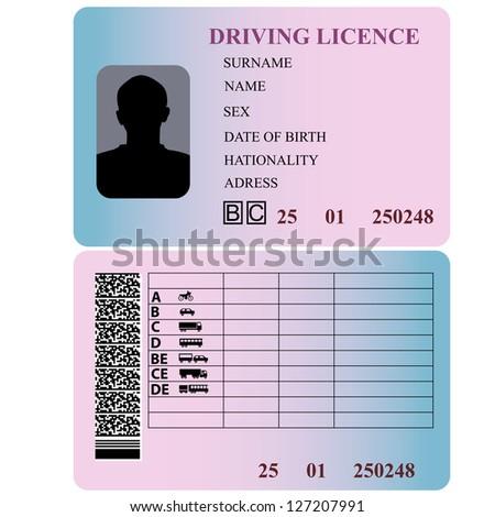 Driving license. Vector illustration. - stock vector