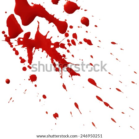 Drop of red blood isolated on white background - stock vector