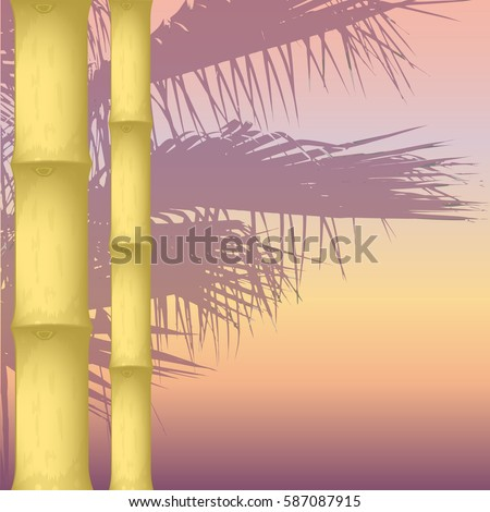 dry bamboo on an abstract background. silhouette of a palm tree. vector illustration