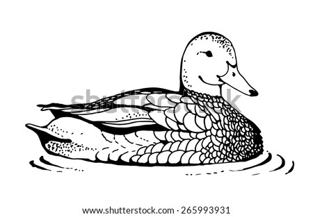 duck drawing in retro style isolated on white background