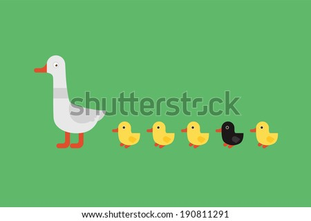 Duck with yellow ducklings and one black on green background. - stock vector