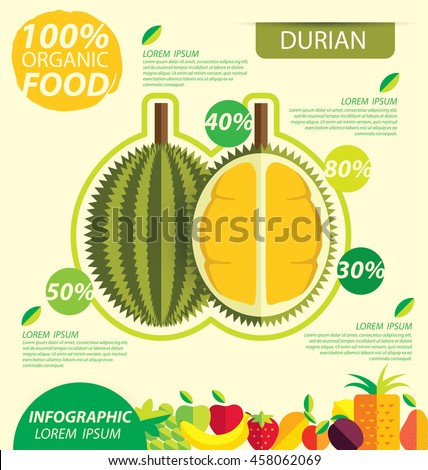 Durian. Infographic template. vector illustration.