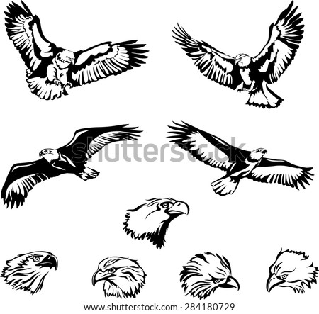 Eagle, flying eagle,the head of an eagle - stock vector