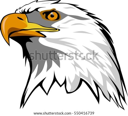 Eagle Head Stock Images Royalty Free Images amp Vectors Shutterstock