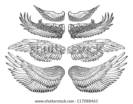 Bird With Open Wings Drawing Eagle Wings Vector Drawing