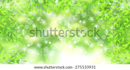 Early summer background leaf