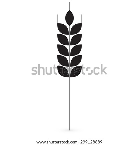 Ears of Wheat, Barley or Rye vector visual graphic icons, ideal for bread packaging, beer labels etc. 1 - stock vector