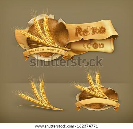 Ears of wheat, vector icon - stock vector