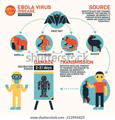 Ebola Virus Disease Infographics  - stock vector