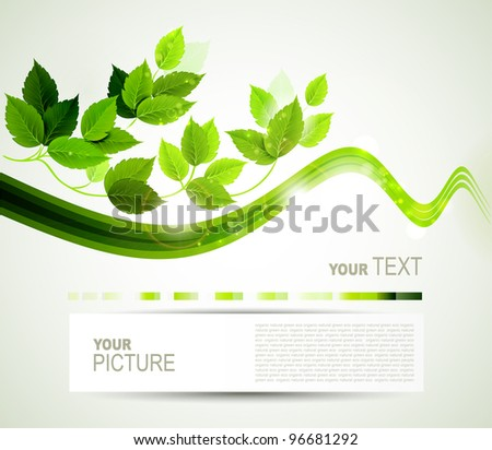 eco brochure  with  branch of fresh green leaves - stock vector