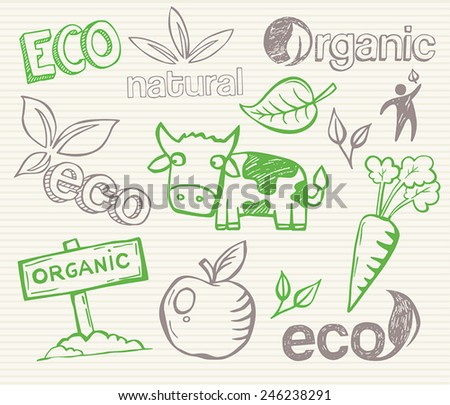 Eco Doodles - hand-drawn pictures that can be used to illustrate ecological topics or organic farming and healthy food. - stock vector