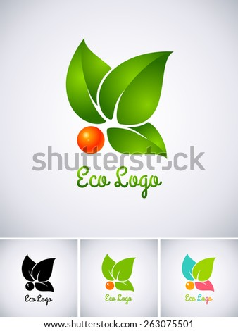 Eco logo with orange berry and green leaves - stock vector