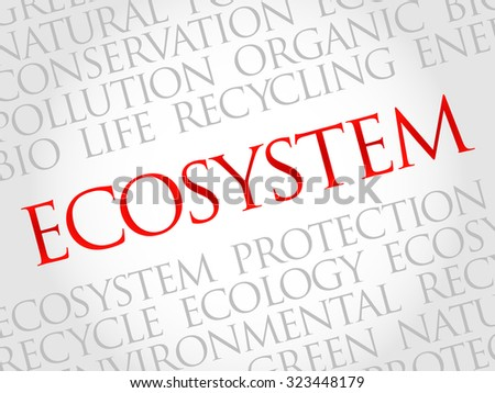 Ecosystem word cloud, environmental concept - stock vector