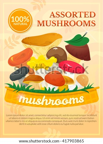 Edible mushrooms concept design, colorful packaging poster, vector illustration - stock vector