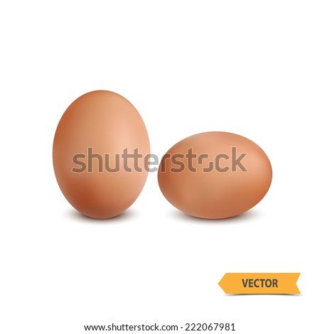 Egg on a white background. - stock vector