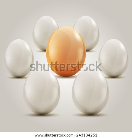Eggs Eggs in the circle