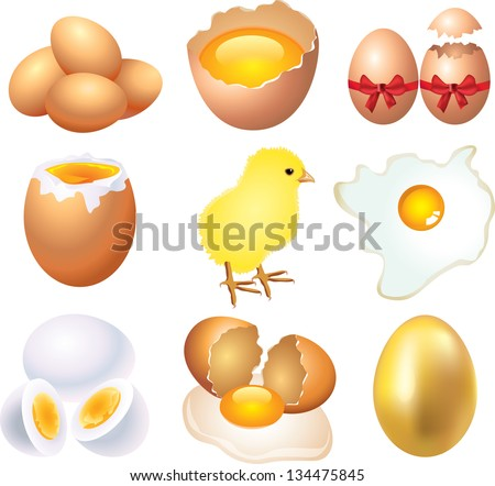 eggs photo-realistic vector set - stock vector