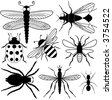 Eight Insect Silhouettes - stock vector