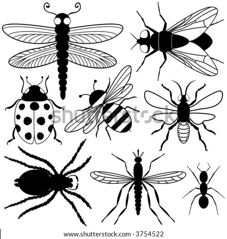 Eight Insect Silhouettes