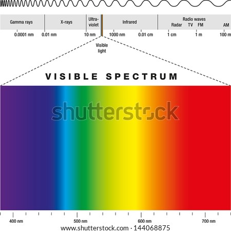 Electromagnetic Spectrum - stock vector