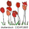 elegant hand drawn red tulips for your spring design - stock vector