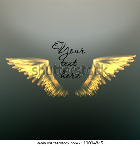 Elegant vector background with wings. - stock vector