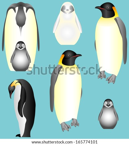 Emperor Penguins. Collection of isolated Emperor Penguins. Emperor penguins, young birds. Emperor Penguin Family - stock vector