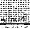 "Engraving ancient animal evolution set from ""The Complete encyclopedia of illustrations"" containing the original illustrations of The iconographic encyclopedia of science, literature and art, 1851. - stock vector"