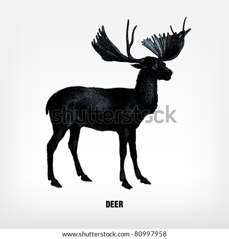 """Engraving vintage deer from """"The Complete encyclopedia of illustrations"""" containing the original illustrations of The iconographic encyclopedia of science, literature and art, 1851. Vector. - stock vector"""