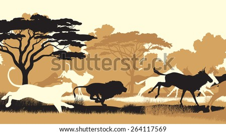 EPS8 editable vector cutout illustration of lions chasing a herd of wildebeest - stock vector