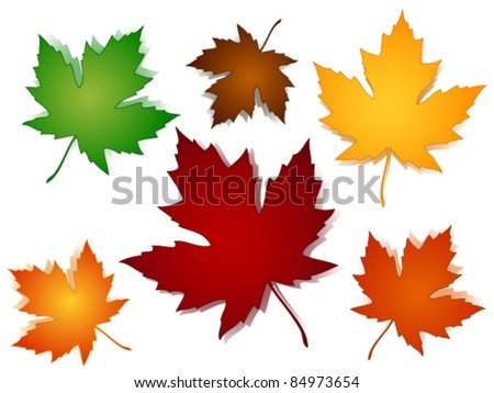 EPS 10:Maple leaves in a variety of autumn or fall colors with shadows - stock vector