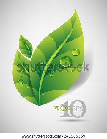 eps10 vector green leaves with dew drops and shadow elegant business background - stock vector