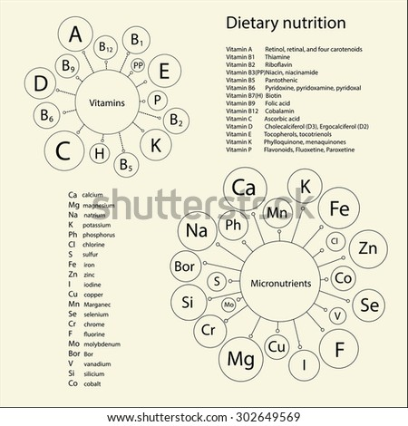 Essential vitamins and trace elements necessary for human health. Schematic representation and lists short and full names of the items. - stock vector