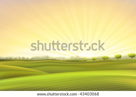 Evening summer pastoral scenery (other landscapes are in my gallery) - stock vector