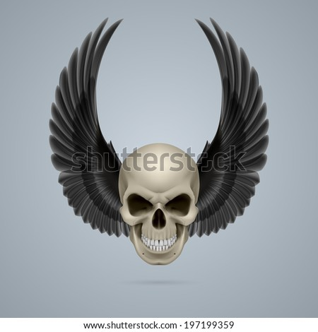 Evil looking ivory skull with two crow wings up. - stock vector