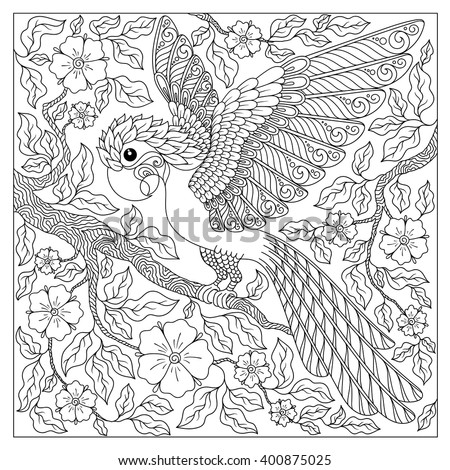 Exotic bird,fantastic flowers,branches, leaves.Contour thin line drawing.Vector fantasy stylized cockatoo jungle parrot silhouette.T-shirt print.Coloring book page for adults and children.Black White - stock vector