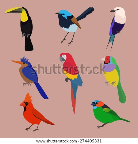 Exotic birds image design set for illustration, decoration and other design needs. - stock vector