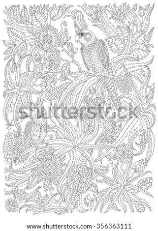 Exotic birds with fantastic flowers, branches, leaves. Black and white contour thin line. Vector decorative fantasy stylized parrot silhouette in the jungle. T-shirt print. Adults coloring book page - stock vector