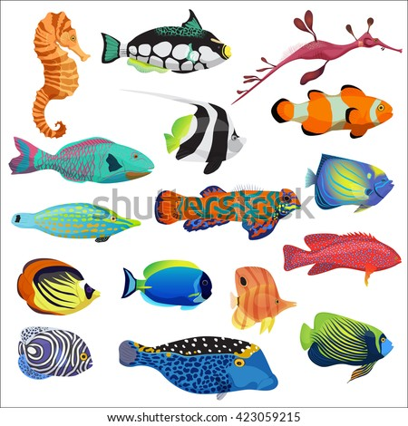 Exotic cartoon colorful tropical fish collection. Marine animals set. - stock vector