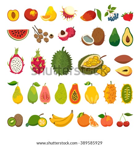 Exotic fruits vector set. Juicy and ripe fruit: papaya, guava, mango cartoon vector. Natural organic fruits. Litchi, jackfruit, rambutan, dragon fruit. Isolated vector illustration on white background