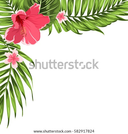 palm card template word - exotic tropical border frame template corner stock vector